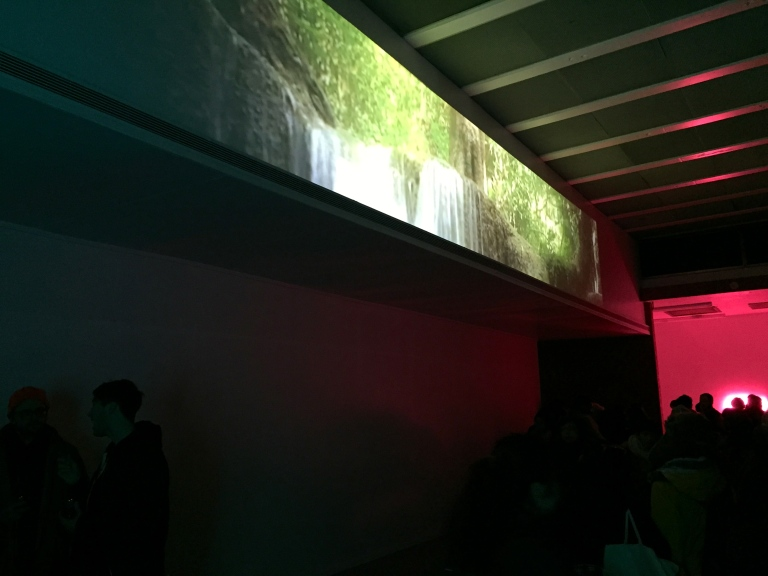 Velvet Peel 2, video installation