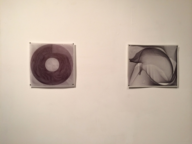 "From left to right: ""pltr_86_3"" and ""pltr_11"" by Mary Reisenwitz"